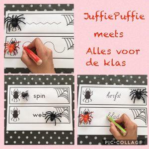 Schrijfkaarten spinnen